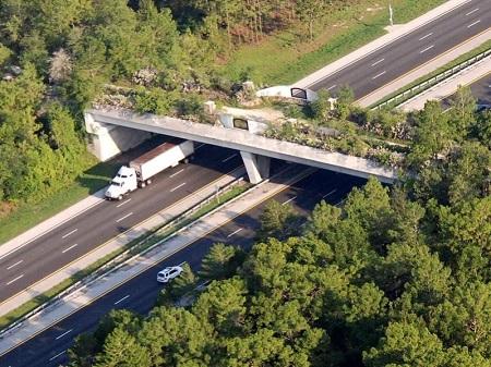 Florida Greenway Bridge over I-75