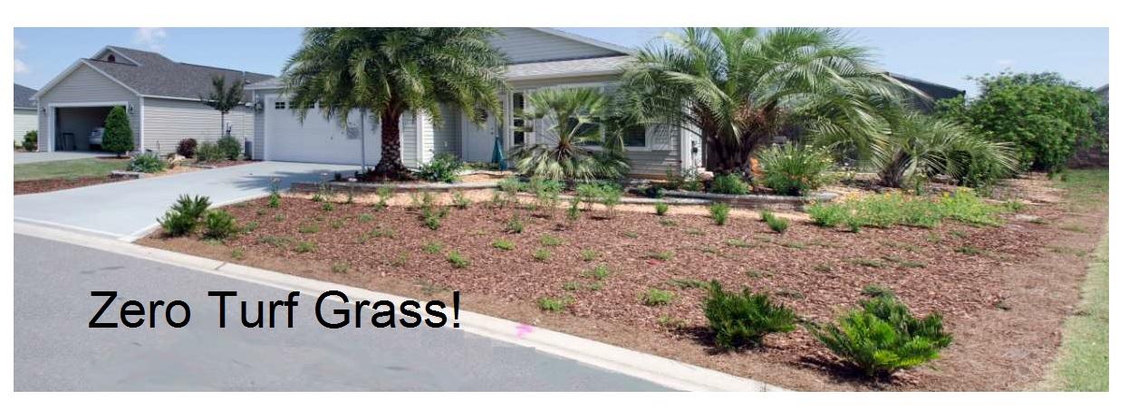 Zero Turf Grass