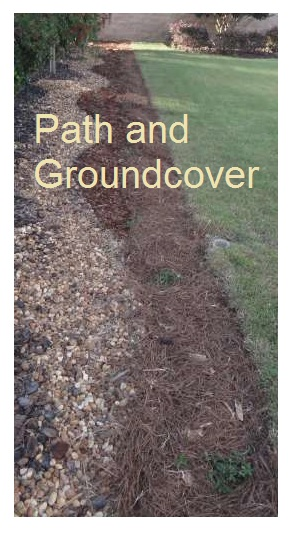 Path and Groundcover